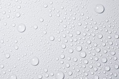 Water drops. On the white background Royalty Free Stock Photo