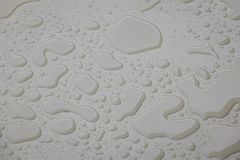Water drops on white  blackground . Stock Photos