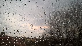 Water drops on window. Pretty rain day in spring morning Royalty Free Stock Photography