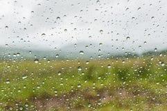 Water drops window rain Stock Photography