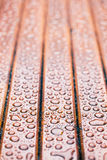 Water drops on wooden garden table Stock Images