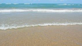 Water edge clear sea. Water edge clear crystal sea stock video