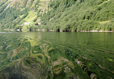Water effects of Naeroyfjord 2 Royalty Free Stock Photography