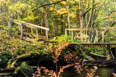 Water en steenbrug Royalty-vrije Stock Fotografie