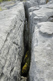 Water Eroded Limestone. Grykes, The Burren Royalty Free Stock Photography
