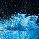 Water explosion royalty free stock image