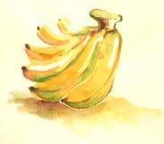 Water färgar den gula bananillustrationen Fotografering för Bildbyråer