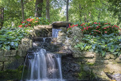 Water-fall in a botanical garden Stock Images