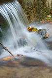 Water fall of a creek Royalty Free Stock Photo