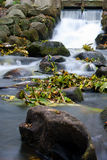 Water fall of a creek Royalty Free Stock Photography