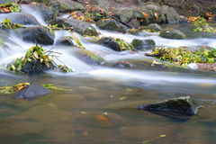 Water fall of a creek Stock Photos
