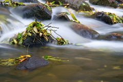 Water fall of a creek Royalty Free Stock Photos