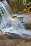 Water fall of a creek Stock Images