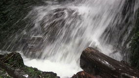 Water fall flowing onto logs. Stock Photography