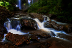 Water fall in forest. Water fall in rain forest Royalty Free Stock Photo