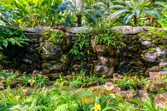 Water fall in garden Stock Image