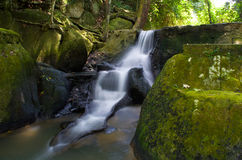 Water fall in jungle Royalty Free Stock Images
