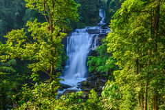 Water fall located in deep rain forest jungle. Water fall in spring season located in deep rain forest jungle beautiful landscape Stock Images