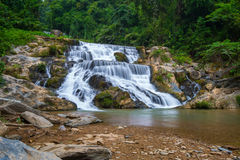 Water fall located in deep rain forest jungle Royalty Free Stock Photo