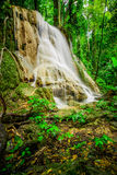 Water fall located in deep rain forest jungle Stock Photography