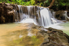 Water fall. Magnificent waterfalls nature created the lush green forests Royalty Free Stock Image