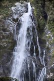Water fall in the Milford Sound Royalty Free Stock Images