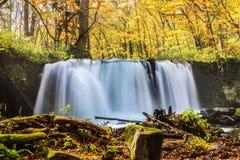 Water fall of Oirase Stream in autumn at Towada Hachimantai Nati Royalty Free Stock Photo