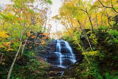 Water fall of Oirase Stream in autumn at Towada Hachimantai National Park in Aomori, ,Tohoku, Japan. Colorful forest Stock Photos
