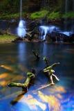 Water fall. Phukradueng National Park of Thailand.Waterfalls, caves Stock Image
