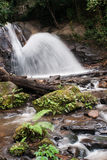 Water fall rain forest national park Royalty Free Stock Image