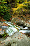 Water fall. Silk-like water flow over the rocks and colored leaves Stock Image