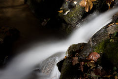 Water fall. Silk-like water flow over the rocks and leaves Royalty Free Stock Photo