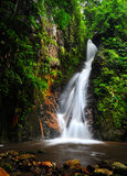 Water fall in spring season. Located in deep rain forest jungle royalty free stock photography