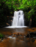 Water fall in spring season. Located in deep rain forest jungle stock photos