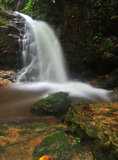 Water fall in spring season. Located in deep rain forest jungle Stock Photo