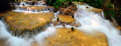 Water fall in spring season. Located in deep rain forest jungle stock images