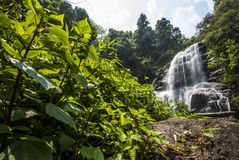 Water fall in spring season located in deep rain forest jungle. Royalty Free Stock Photography