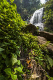 Water fall in spring season located in deep rain forest jungle. Royalty Free Stock Photo