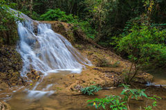 Water fall in spring season located in deep rain forest jungle Stock Photos