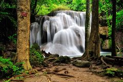 Water fall in Thailand Royalty Free Stock Images