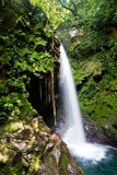 Water fall in the tropical forest Royalty Free Stock Images