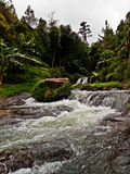 Water fall. The vilage of guci, tegal, central java, Indonesia Royalty Free Stock Photos