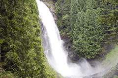 Water fall waterfall forest mountain Stock Photography