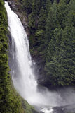 Water fall waterfall forest stock photo