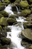 Water fall waterfall Royalty Free Stock Photography