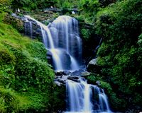 Water fall: white water in flow. Water fall at rockgarden, darjeeling, west bengal, india with beautiful white water flowing between lush green forest and rocks Stock Photos