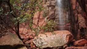 Water falling from the cliff during a rainstorm hits the branches of a small tree while in the background a small cascade grows. As the rain fills the washes stock footage