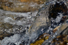Water falling over stones in a wild river. In the mountains Royalty Free Stock Photography