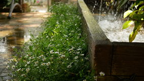 Water falling and splashing with pond in the garden stock video footage