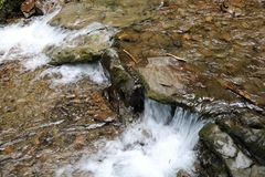Water falling on stones. Beautiful forest mountain stream in a wild forest Royalty Free Stock Image